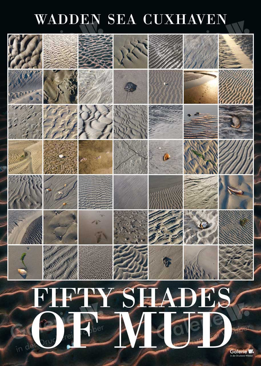 55286 50 Shades of Mud