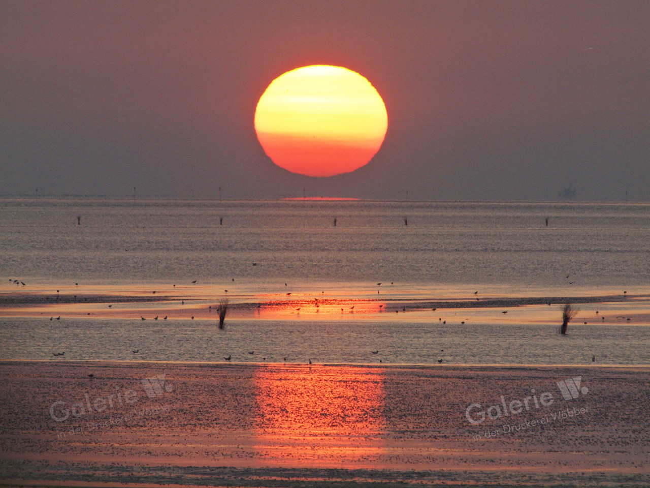 55203 Sonnenuntergang