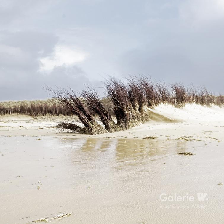 20245 Döser Strand