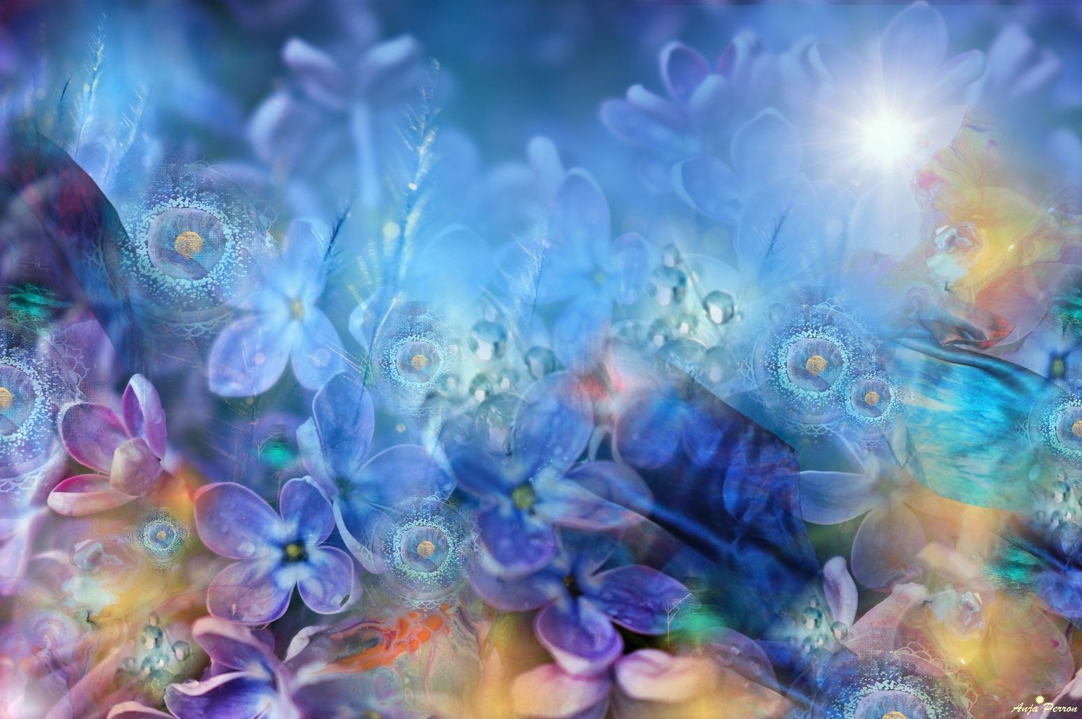 Blüten-Welt