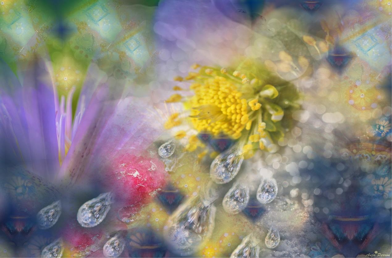 Eisblumen-Schmelzen
