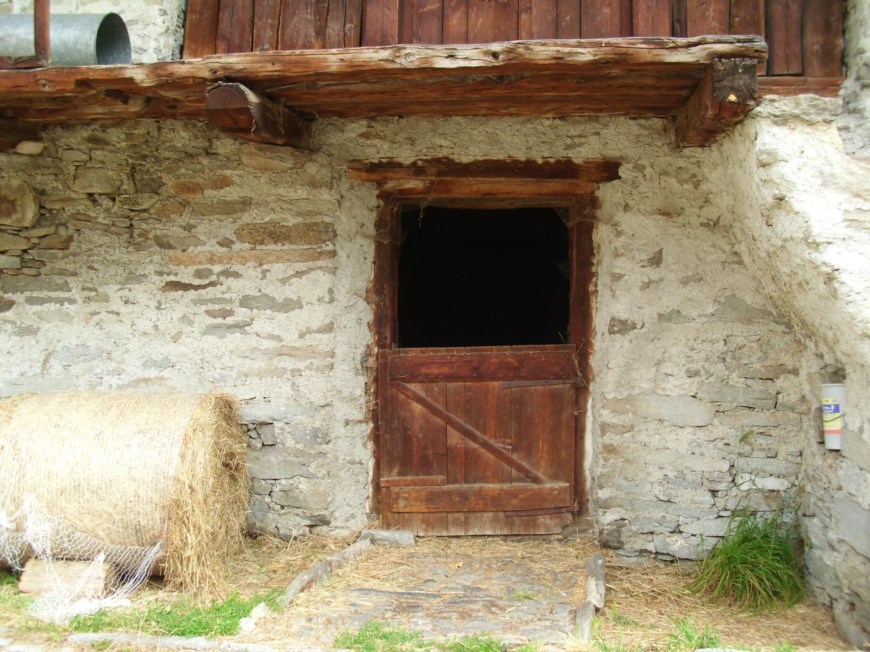 Als ich Kind war, hatte es ist ganz Soglio überall Ziegen. Abends kamen sie von der Alp zurück in ihre Ställe.