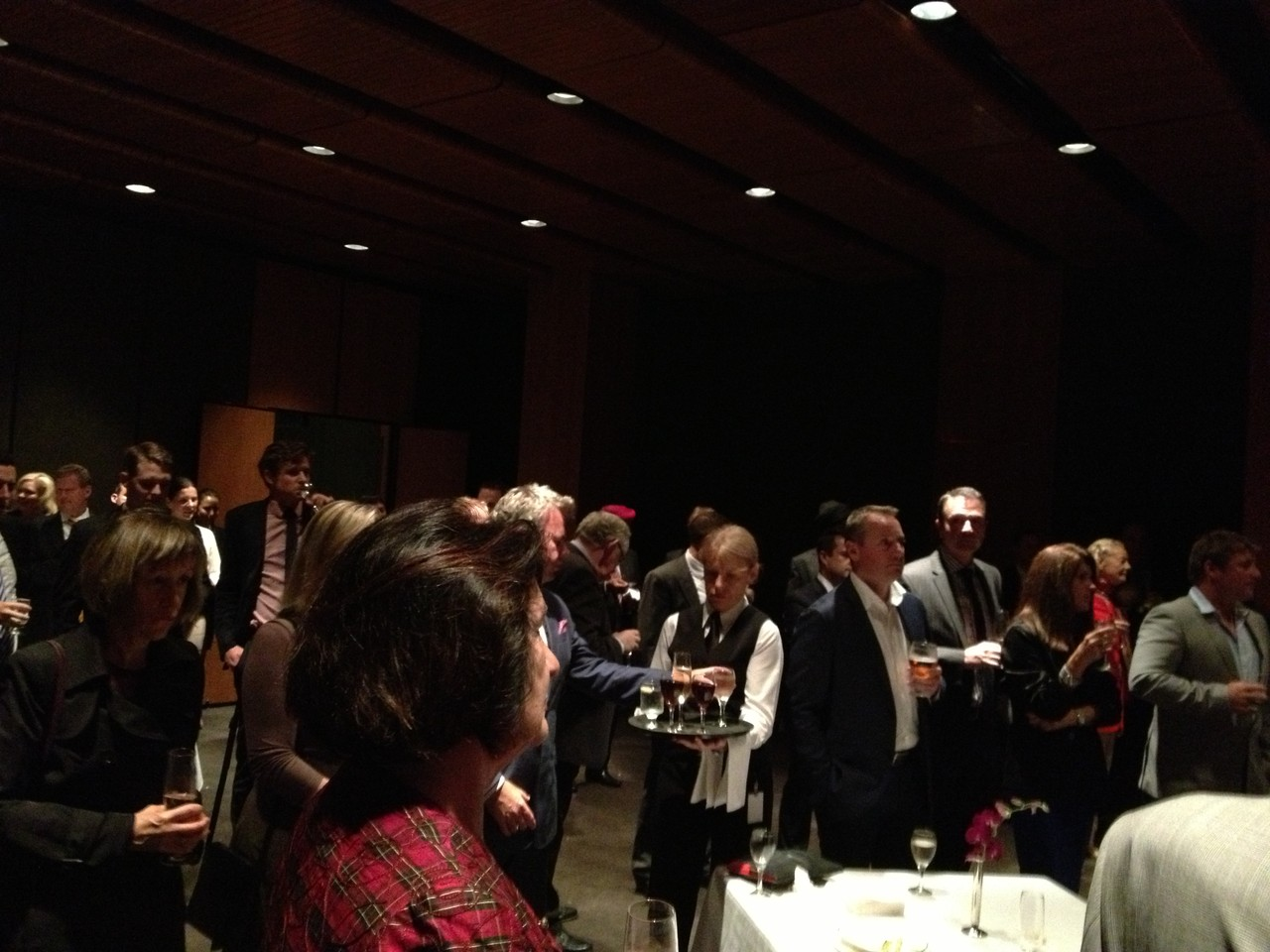 Guests at NSW Parliament House supporting the Australia Youth Trust