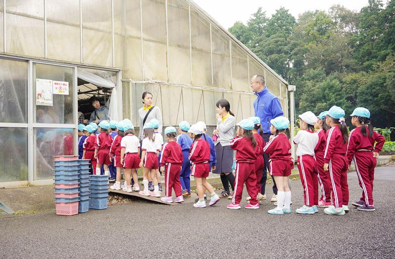 佐倉市・くるみ幼稚園の遠足で椎茸狩り