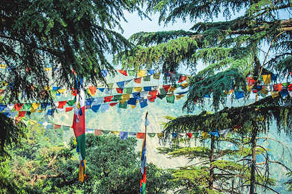 Prayer flags in union with the wind and the Earth
