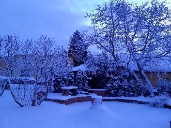 リトアニア カウナス 雪の庭            オウレリアス・ジーカス氏撮影