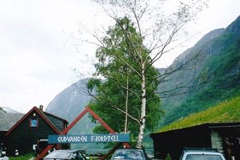 フィヨルド 2003年6月        小島美代子氏提供