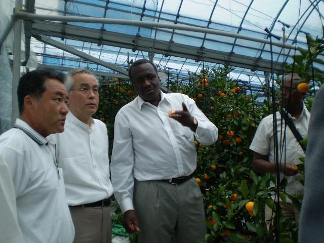 ケニア・アウォリ駐日大使、ルワンダ・ルワマシラボ駐日大使 2008.08.11 柑橘果物栽培技術紹介、通訳