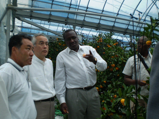 Ambassadors from Kenya and Luwanda, 2008.08.11, introduction of citrus fruits grwoing