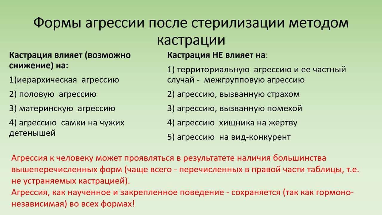 """""""ГОРОД ДЛЯ ЛЮДЕЙ!"""