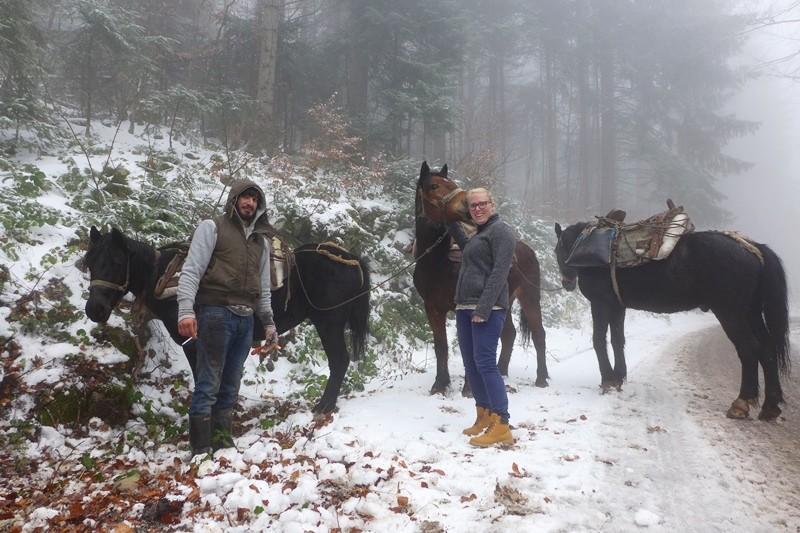 Holzrückepferde im Nationalpark Tara