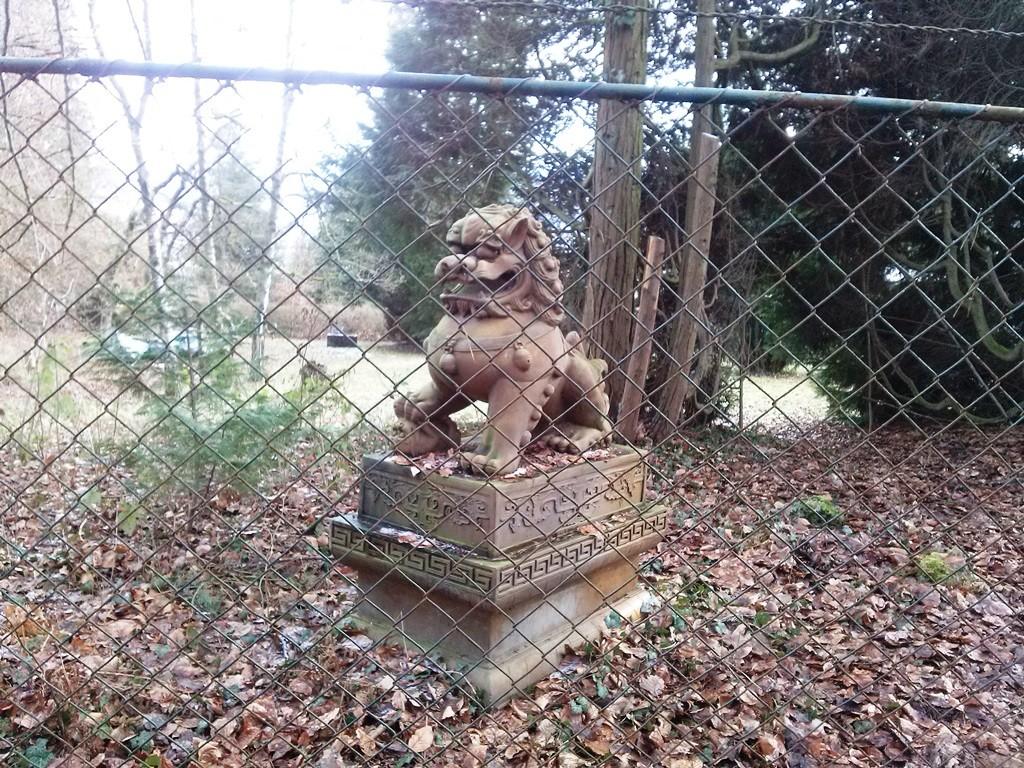 Katze hinter Gittern