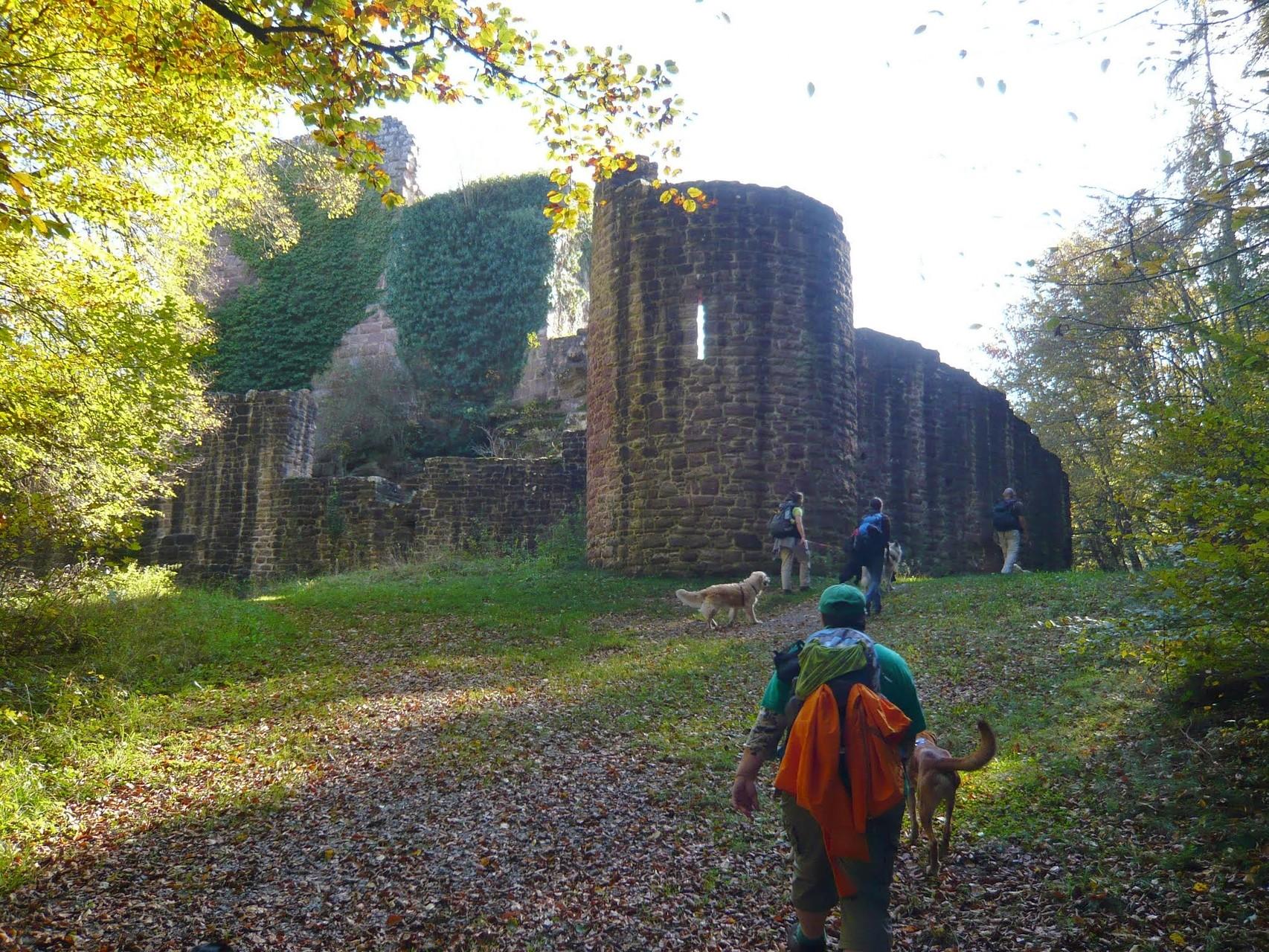 Oktober: Geigerles Lotterbett und Ruine Waldeck (10.2014)