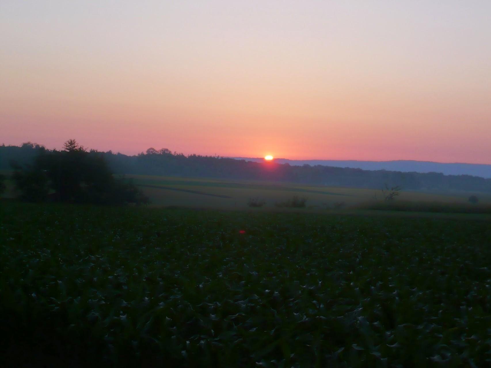 Juni: Sommersonnwende mit den Wanderwölfen (06.2014)