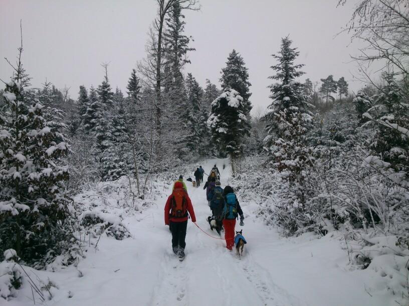 Dezember: Die abgekürzte Küblers Loch-Tour (12.2014)