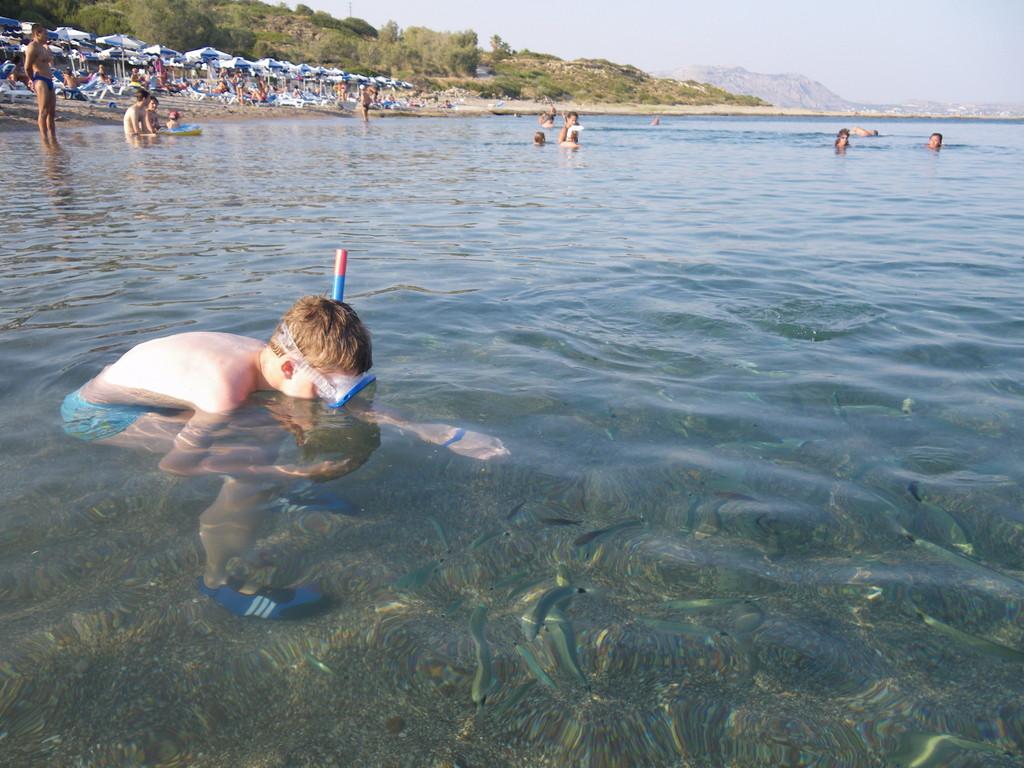 Glasklares Wasser lädt förmlich zum Tauchen und Schnorcheln ein und die Fische sind fast handzahm