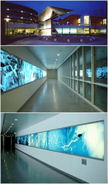 """""""Wasserfest"""", 25 Meter-Lichtwand-Installation, Wettbewerbsarbeit, Oberösterreichische Landes-Nervenklinik Wagner-Jauregg, Linz 2002"""