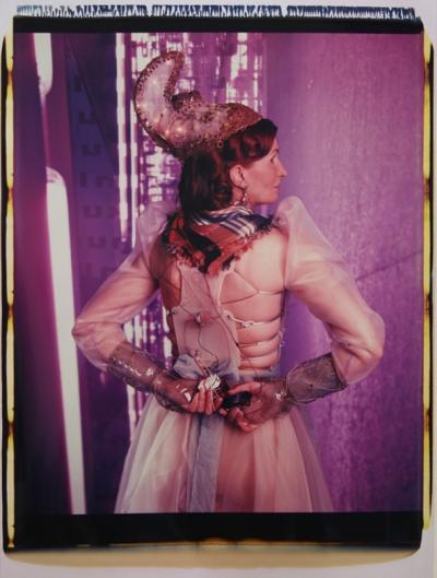 Irene Andessner, Schöne Linzerin, Polaroid, 65x45cm, 2009, Nr.: 14