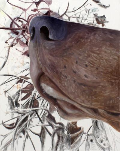 "Alois Mosbacher, ""Schnauze"", Öl auf Leinwand, 120x95 cm, 2015"