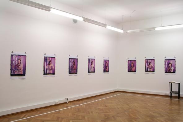 Irene Andessner, Schöne Linzer, Ausstellungsansicht Brunnhofer Galerie, 2009