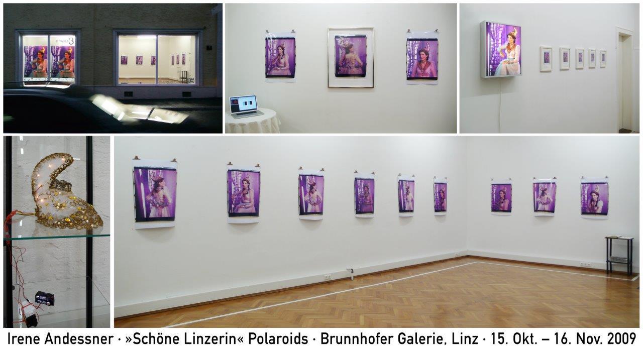 Irene Andessner, Schöne Linzer, (Doku), Brunnhofer Galerie, 2009