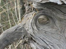 Holz-Geist