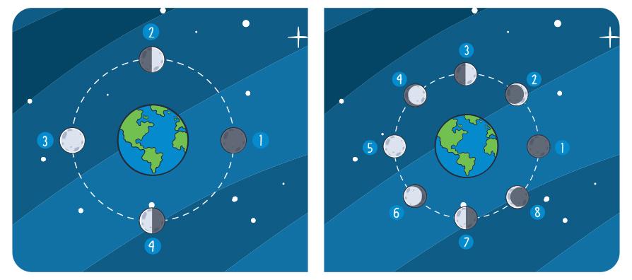 diferencias entre ocho y cuatro fases de la luna para niños aula360