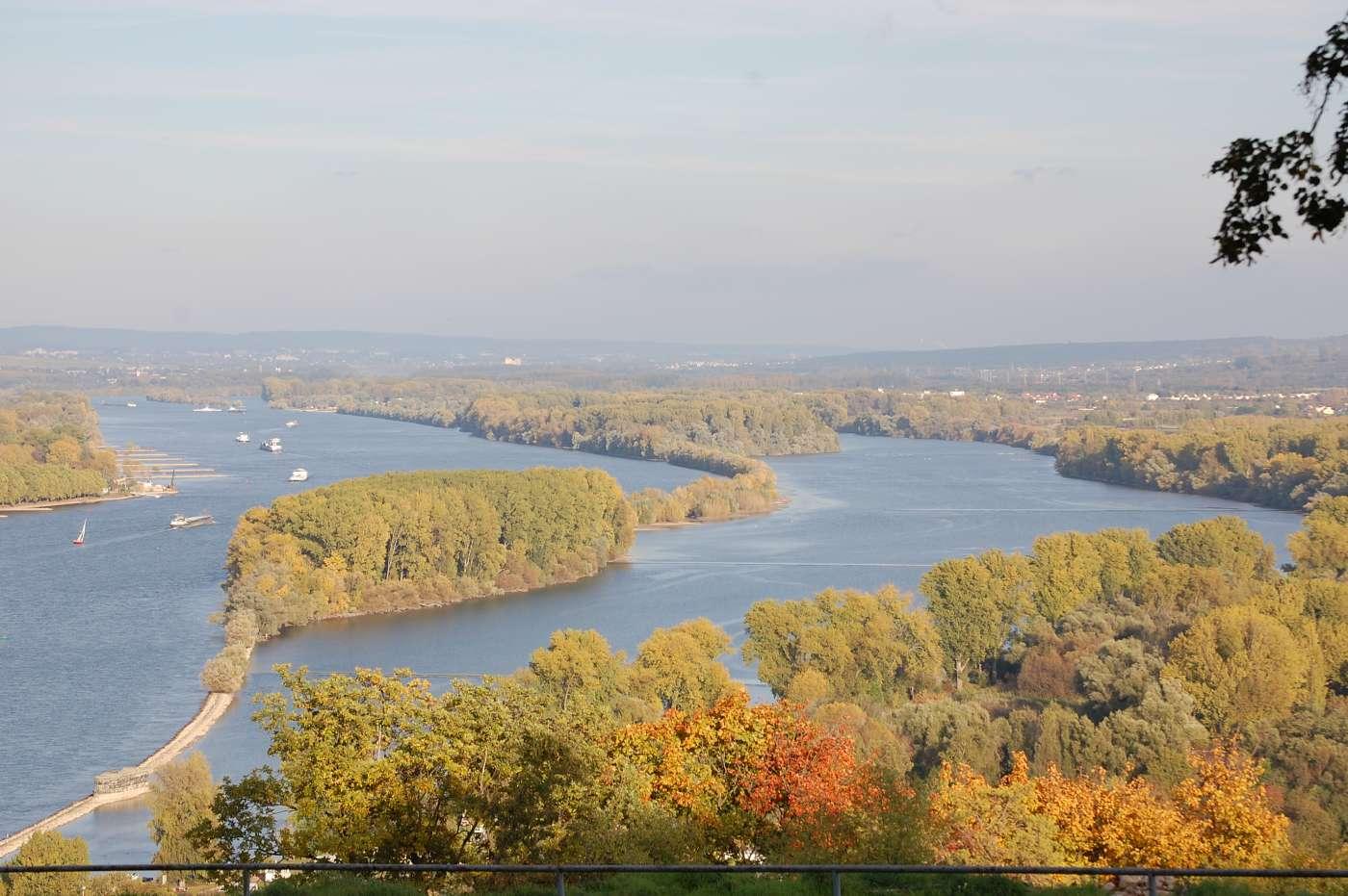 Einmalige Naturlandschaft: Der Inselrhein zwischen Mainz und Bingen