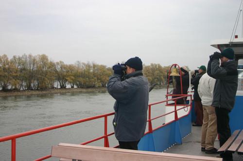Schiffexkursion entlang des Inselrheins