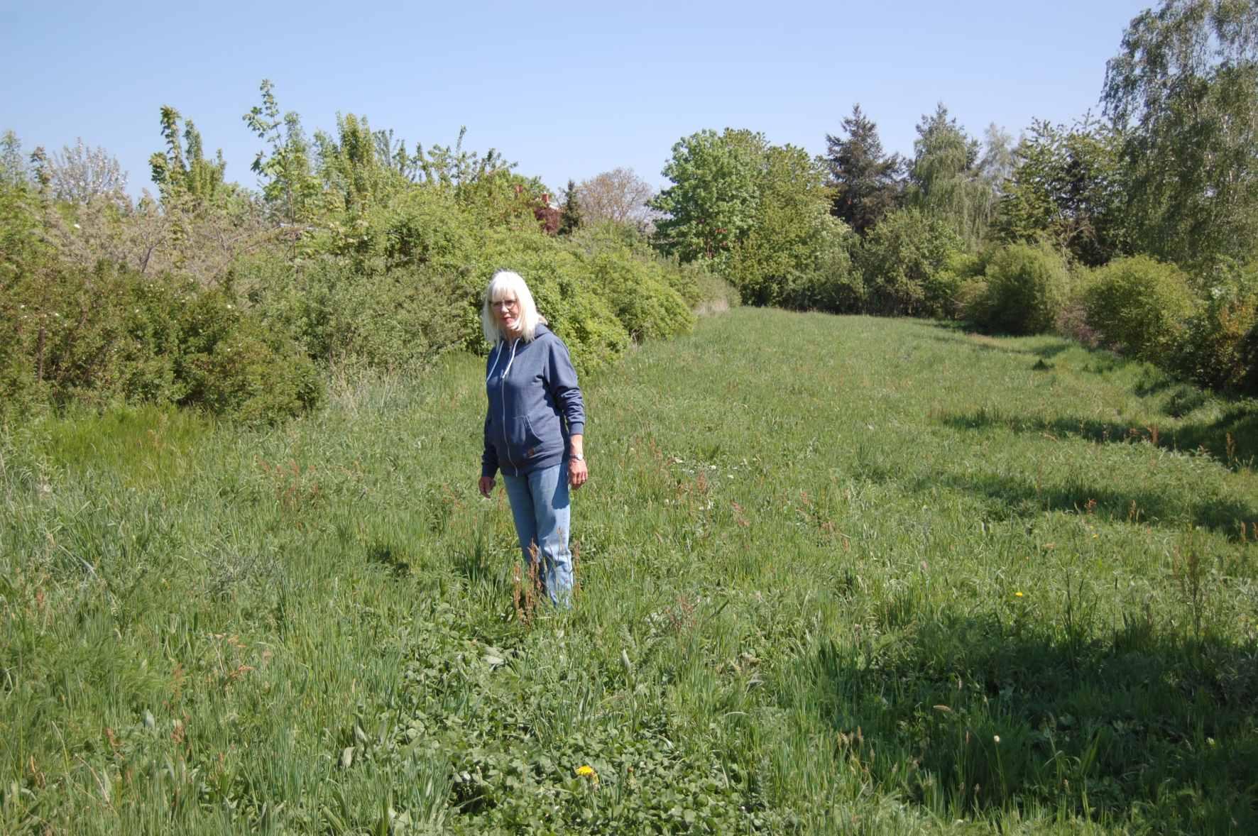 Wildkräuterbotschafterin besichtigt Blühfläche, Frühjahr 2020