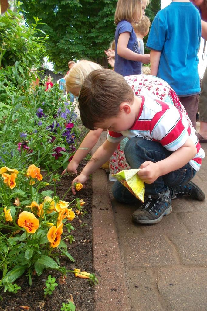 Wir bepflanzen unseren Garten, sähen Sonnenblumenkerne aus und machen alles schön