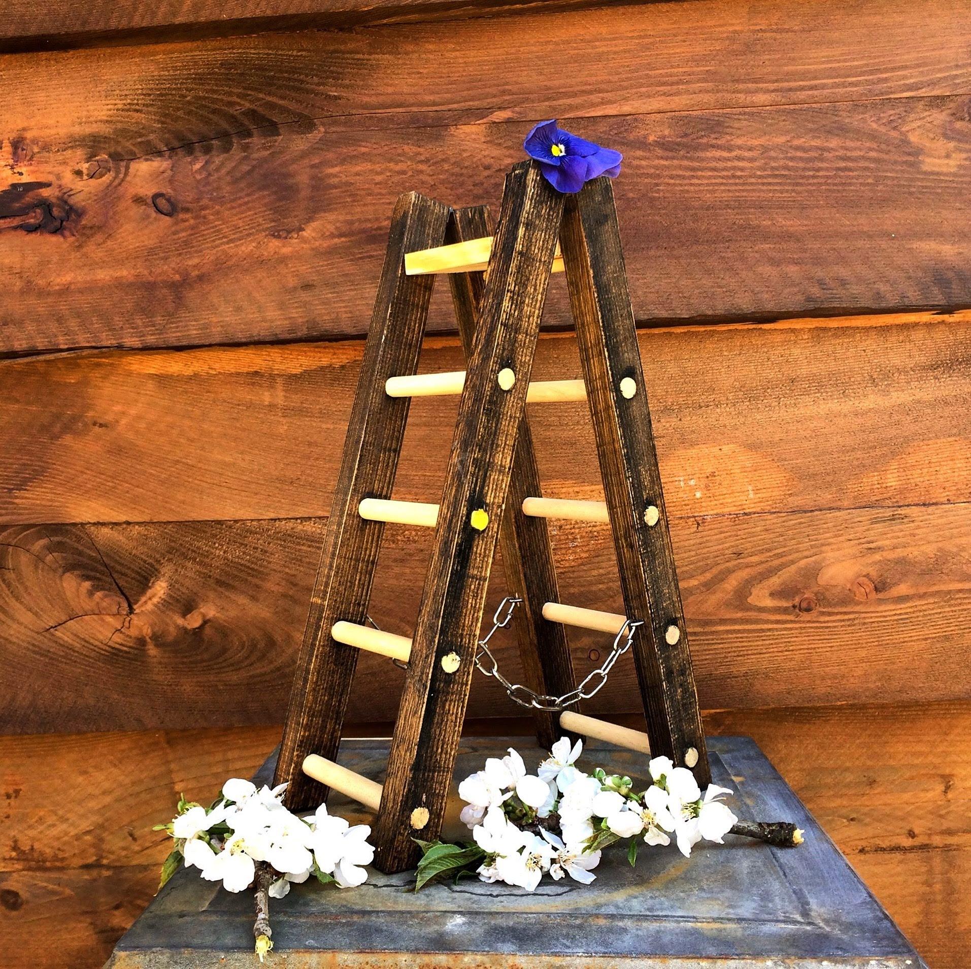 Scaletta espositore in miniatura in legno colore scuro