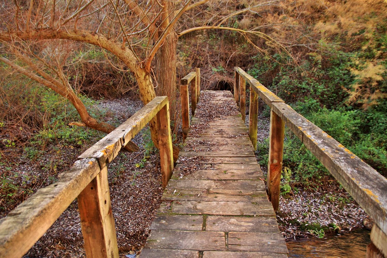 """The Wooden Bridge"" - Rio Cacin, Cacin, Granada - B05106"