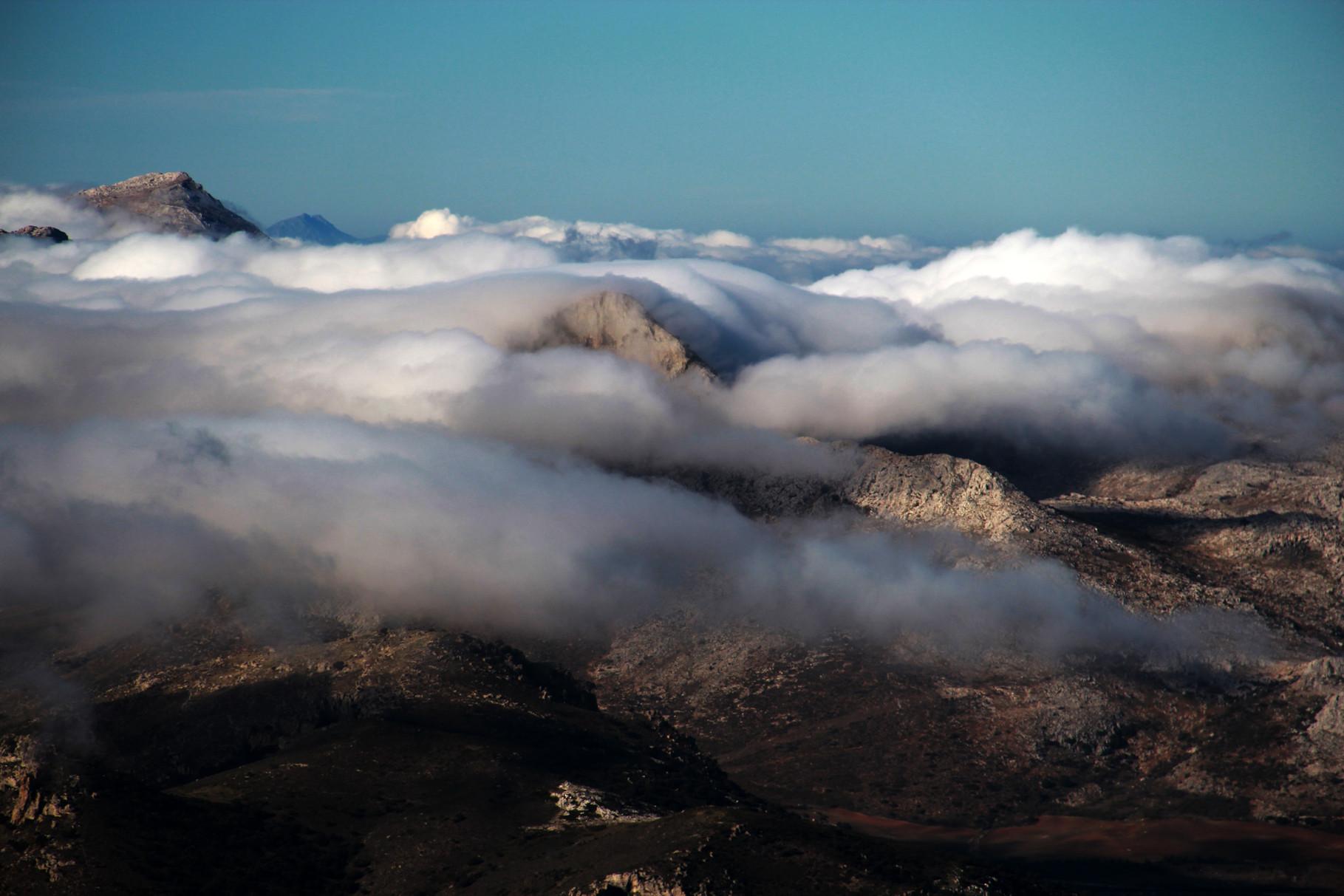 """The Carpet"" - PN Sierra Nevada, Granada - MC00009"