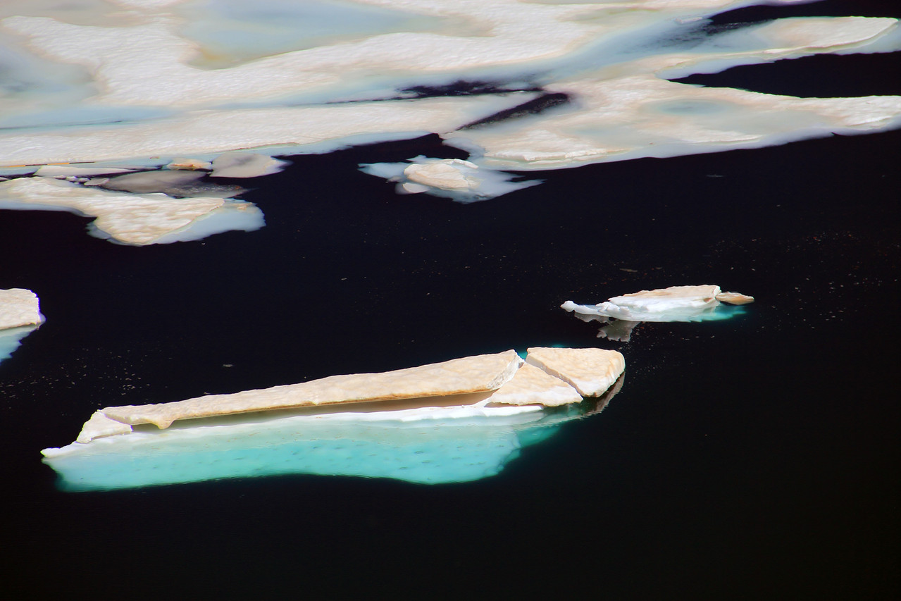 "The Ice Floe"" - PN Sierra Nevada - DF09339"