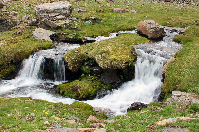 PN Sierra Nevada, Granada - R03912