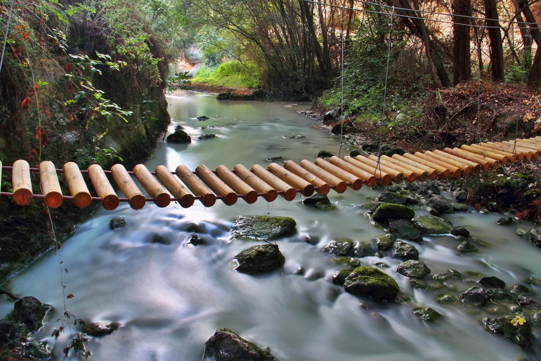"""The Tree Bridge"" - Rio Cacin, Cacin, Granada - B00861"