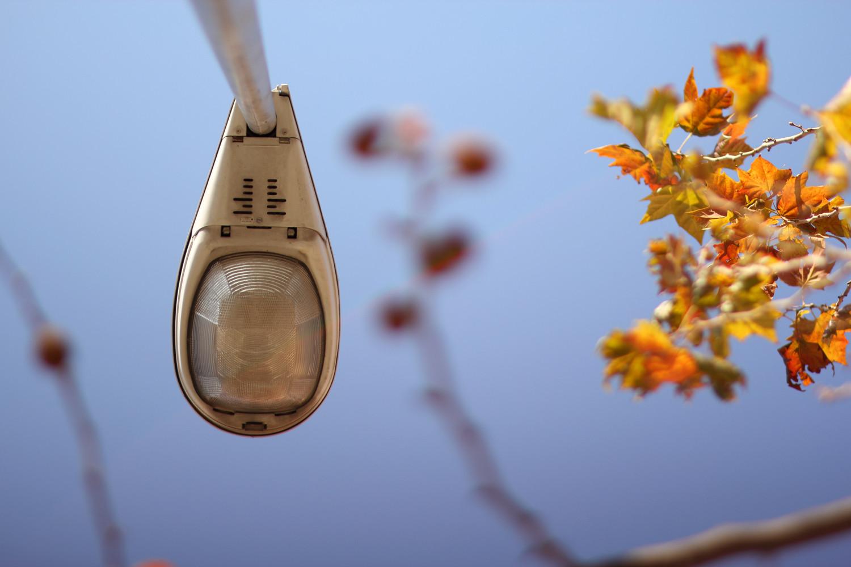 """Autumn Light"" - Street Granada - VH06596"
