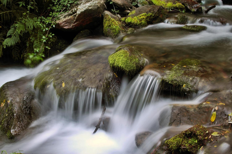Rio de Genil, Granada - WC01399