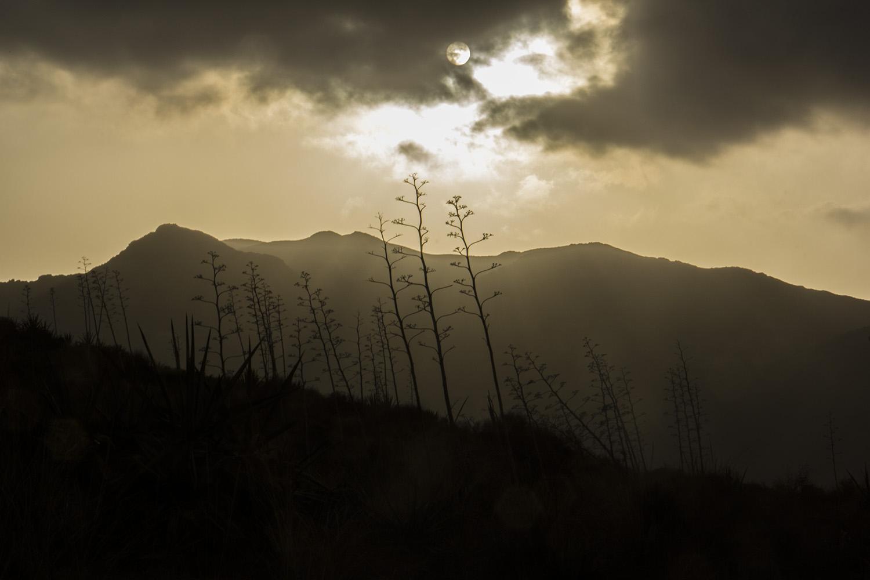 """Evening Sun"" - Cabo de Gata, Almeria - LS06346"