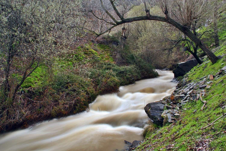 """Rio Genil"" - PN Sierra Nevada, Granada - R06249"
