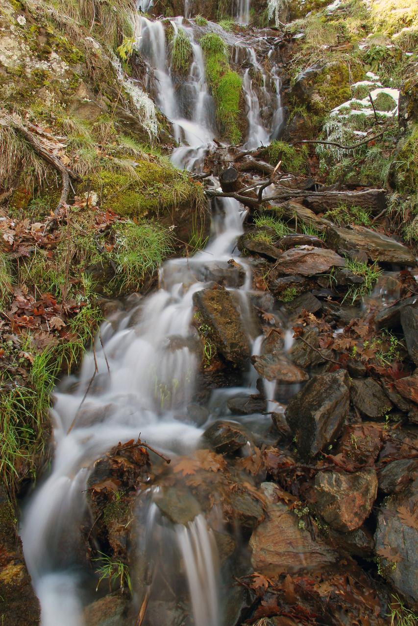 PN Sierra de Nevada, Granada - WF06548