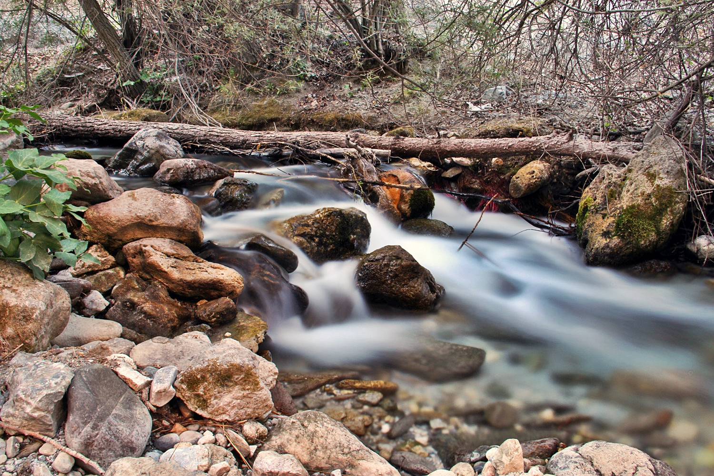 """Rio Dilar"" - Dilar, Granada - R08435"
