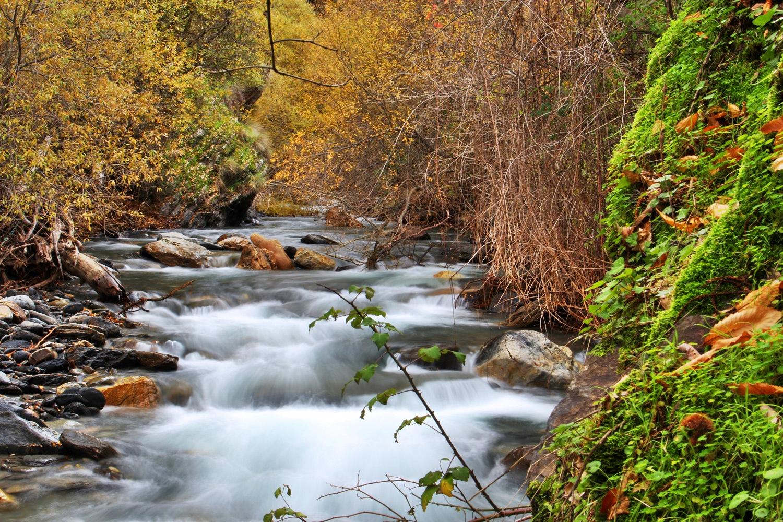 """Rio Genil"" - PN Sierra Nevada, Granada - R03409"