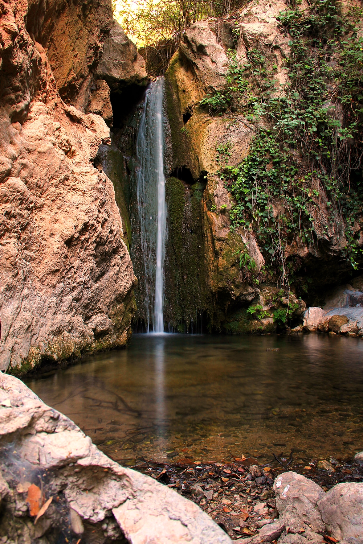 """Padro Negro"" - PN Sierra de Huetor, Granada - WF07926"