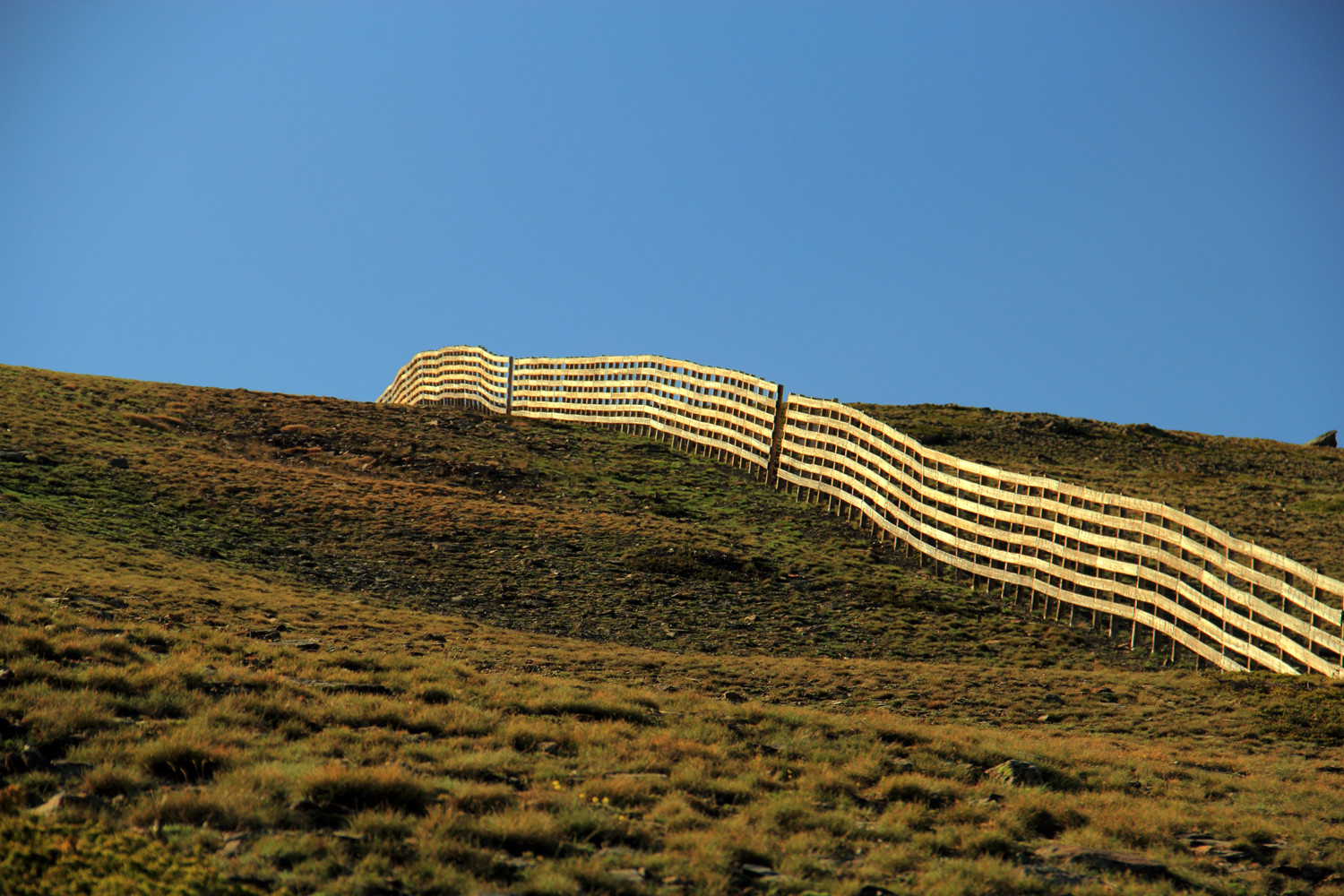 """The Fence"" - PN Sierra de Nevada, Granada - LS06299"