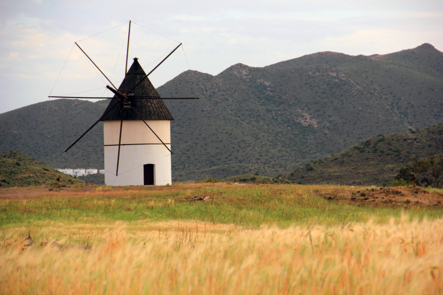 """The Windmill"" - Cabo de Gata, Almeria - LS02810"