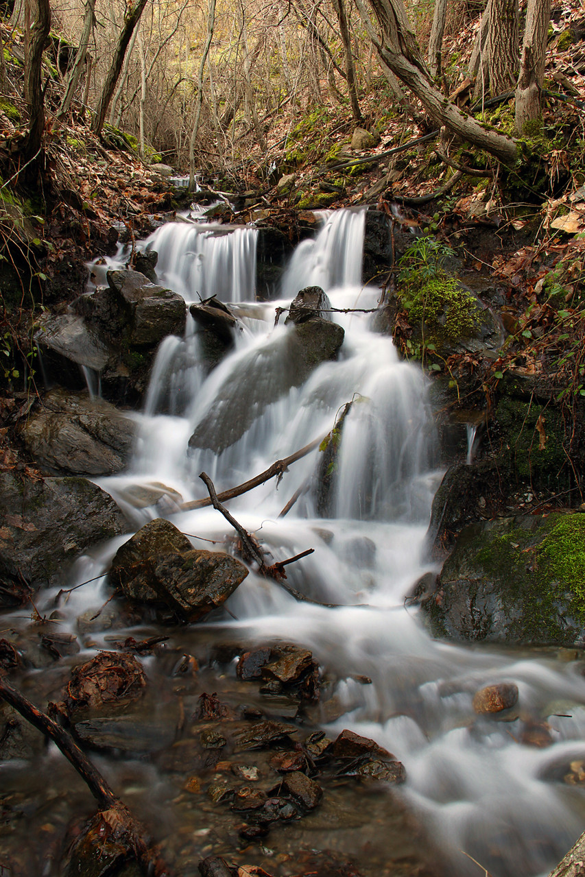 """Spring Water"" - PN Sierra Nevada, Granada - WF06422"