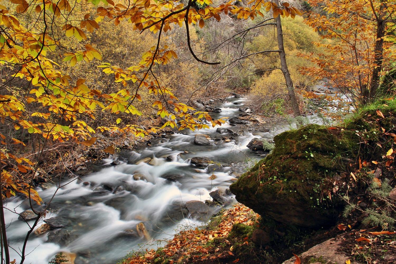 """Rio Genil"" - PN Sierra Nevada, Granada - R03392"