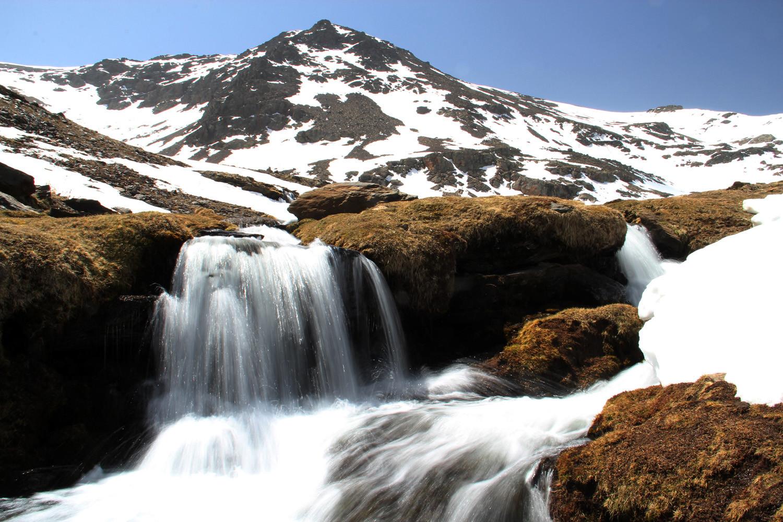 PN Sierra de Nevada, Granada - WF04399
